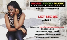 Aneil - Let me be Radio Play flyer size July 2015. 720 X 450