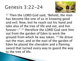 poster genesis 3 22 - 24